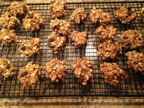 Banana.Oatmeal.Raisin.Bites